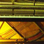 Scopri come è fatto il pianoforte